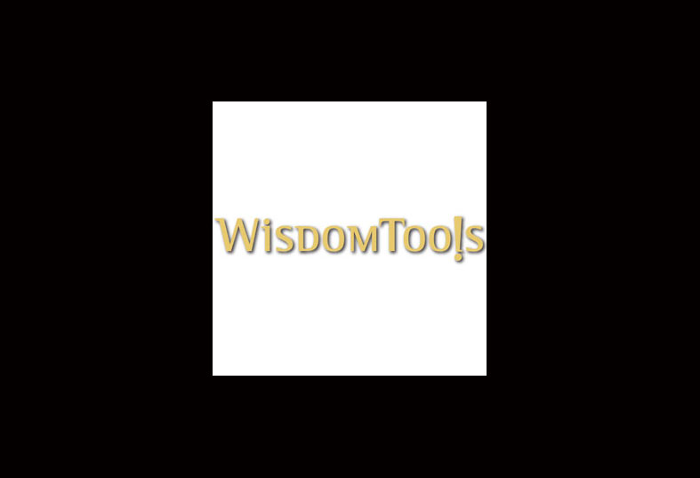 The Development Scenario: The WisdomTools Story - Michael Shermis Portfolio